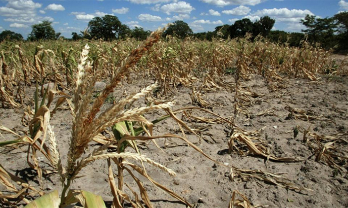 DROUGHT, FLOODS TO HIT ZIM