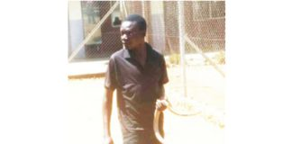 ARRESTED MAN BEGS POLICE OFFICER TO GO HOME & FEED HIS 2 METER LONG SNAKE