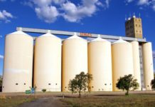 BUMPER HARVEST :GMB SILOS NOT FULL