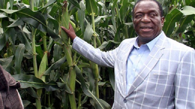 'ED Should Give One Of Mugabe's 21 Farms To The Tsvangirai Family'