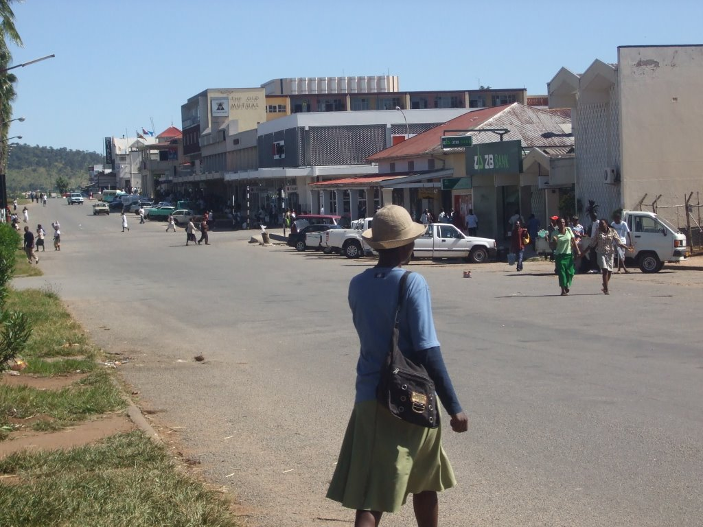 ASPIRING MASVINGO MP BEGS RIVAL FOR NOMINATION FEES