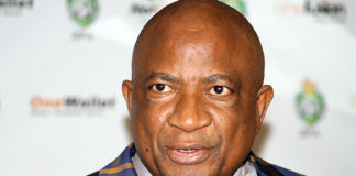 SPORTS COMMISSION BOSS HAILS ZIFA PRESIDENT