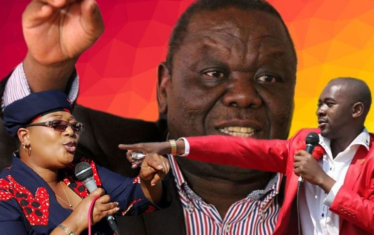 """""""Chamisa Is Leading The Genuine MDC-T,"""" Lawyer"""