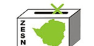 International Election Monitors Defend ZESN Over Election Report