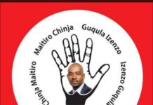Mutasa Central MDC Alliance Youth Activist Ozwell Chitere Abducted?