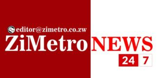 RUINING THE 'Zhuwao' NAME : MAN SENTENCED TO 6 MONTHS IN PRISON