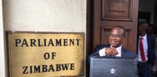 Download PDF : Full Zimbabwe National Budget For 2019 Presented By Mthuli Ncube