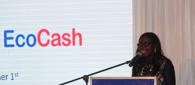 Ecocash CEO Bag UN Position