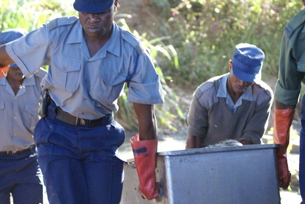 Glen Norah : Man Found Dead With Missing Private Parts