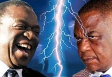 ED risks being ousted Mugabe style