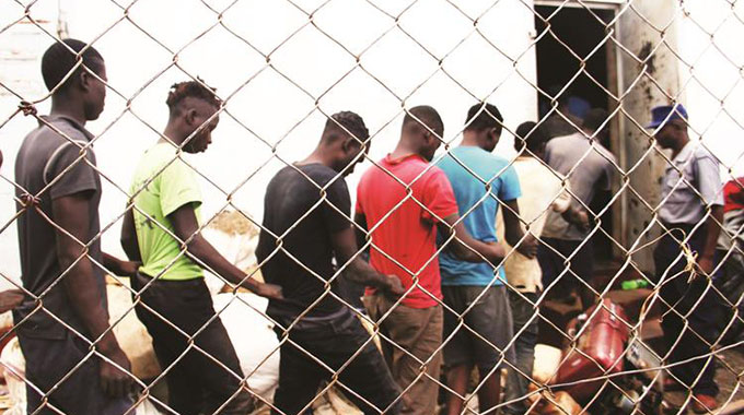 Suspected machete gang members form a human chain while being led into a holding cell at Mazowe Police Camp