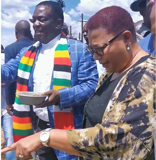 Chamisa's Rivals Clash During First National Council Meeting