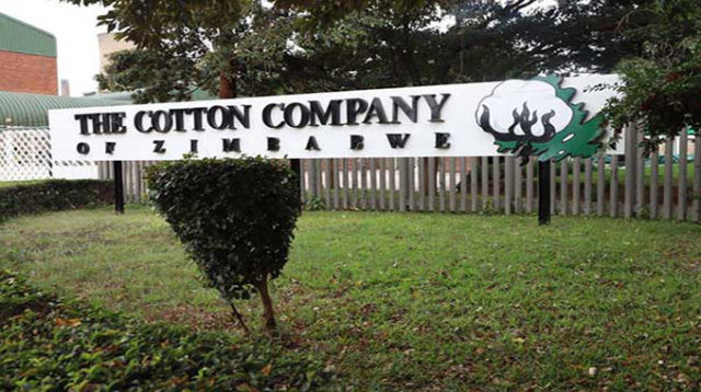 Cottco board to specialize in improving productivity