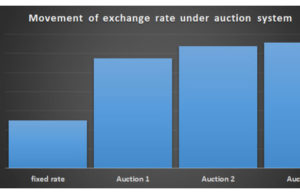 Private sector joins forex auction