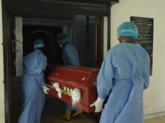 COVID-19 Update: 5 perish in one day as cases shoot up to 982