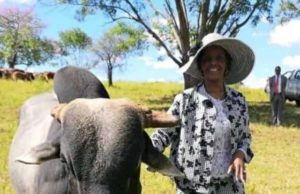 New picture of Grace Mugabe goes viral on social media