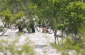 Daring Zimbabweans Crossing Flooded Limpopo Into South Africa - Video