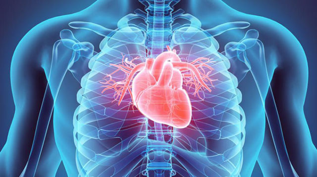 COVID-19 and the heart: What have we learned?