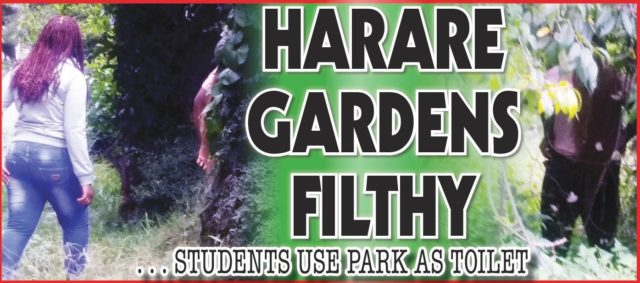Harare Gardens Filthy...Students using park as toilet!