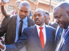 Nelson Chamisa MDC Alliance