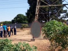 Thief electrocuted while trying to steal cables