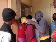 Jackal Found, Shot Dead In A House In Chitungwiza