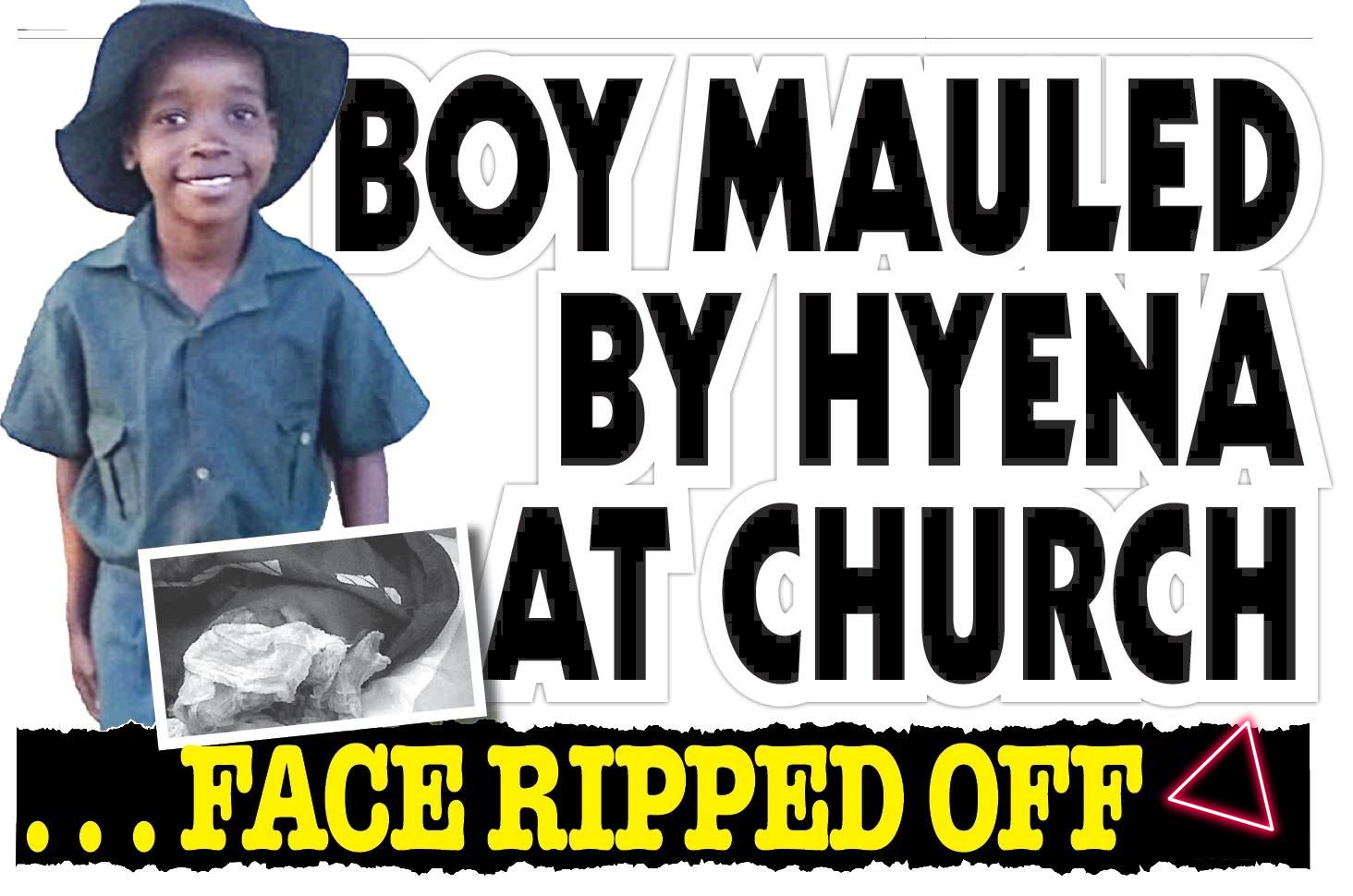 Boy mauled by hyena at church. . . face ripped off