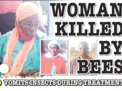 WOMAN KILLED BY BEES...VOMITS BEES WHILE BEING TREATED AT HOSPITAL