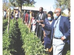 Schools Urged To Engage In Commercial Ventures, Contribute To GDP